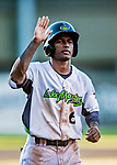 19 June 2018: Vermont Lake Monsters infielder Marcos Brito comes home to score in the 5th inning, tying the game 3-3 against the Connecticut Tigers at Centennial Field in Burlington, Vermont. The Lake Monsters defeated the Tigers 5-4 in the conclusion of a rain-postponed Lake Monsters Opening Day game started June 18. Mandatory Credit: Ed Wolfstein Photo *** RAW (NEF) Image File Available ***