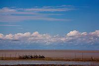 Sao Luis_MA, Brasil...Vista geral da comunidade Cajueiro em Sao Luis. Na foto pescador de camarao...General view of Cajueiro community in Sao Luis. In this photo, a fishermen...Foto: LEO DRUMOND /  NITRO