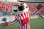 Wisconsin Badgers mascot Bucky Badger during an NCAA college football game against the Austin Peay Governors on September 25, 2010 at Camp Randall Stadium in Madison, Wisconsin. The Badgers beat the Governors 70-3. (Photo by David Stluka)