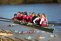 Crew: 60   W 8+ BAND-1   Oxford Brookes University Boat Club   OXB-W8+ B<br /> <br /> Wallingford Head 2017<br /> <br /> To purchase this photo, or to see pricing information for Prints and Downloads, click the blue 'Add to Cart' button at the top-right of the page.