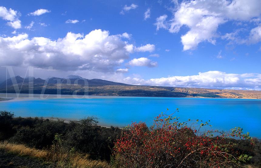 New Zealand scenic in South Island. Glacier water in Waitaki District at lake Pukkaki.