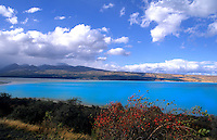 New Zealand scenic in South Island. Glacier water in Waitaki District at lake Pukkaki.