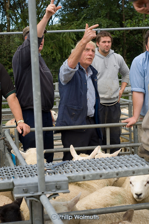 Farmers at a sheep sale in Bryncir, on the edge of the Snowdonia National Park in North Wales