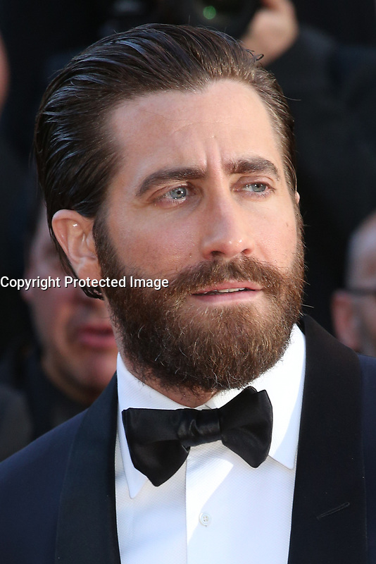 JAKE GYLLENHAAL - RED CARPET OF THE FILM 'OKJA' AT THE 70TH FESTIVAL OF CANNES 2017