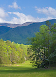 Great Smoky Mts. National Park, TN/NC<br /> Spring meadow and pasture wind along the forest edge in Cades Cove with the Smoky Mountain ridges and white clouds in the distance