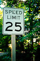 Traffic sign indicates 'Speed Limit 25' on a leafy residential street.