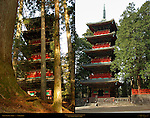 Gojunoto Five Story Pagoda Rear View through Cryptomeria Forest Front View Composite Image Nikko Toshogu Shrine Nikko Japan
