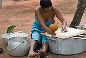Xingu Indigenous Park, Mato Grosso State, Brazil. Aldeia Matipu (Matipu). Gabriela Kamaiura, daughter of Cacique Kotoki, sieving manioc to make beju, being watched by a pet green parrot.