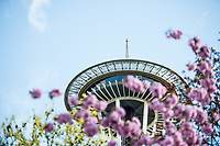 Seattle, Washington -  Saturday April 22, 2017: The Space Needle overlooks Memorial Stadium during a regular season National Women's Soccer League (NWSL) match between the Seattle Reign FC and the Houston Dash.