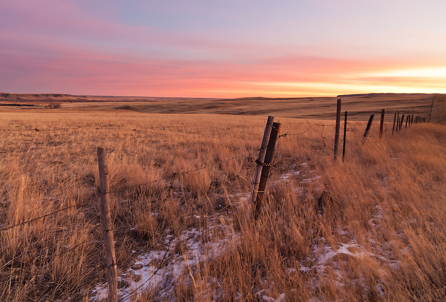 The sun rises over a pasture in Cascade County, Montana as seen from a barbed wire fenceline.