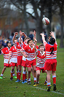 150718 Canterbury Junior Rugby - Merivale-Papanui Under-11s v Hornby