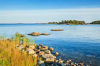 Stear vass gräs och blått hav vid Tistronskär i Stockholms skärgård