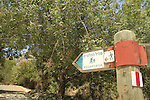 Israel, Upper Galilee, the trail to Koach fortress