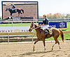 Borderland winning at Delaware Park on 10/18/12