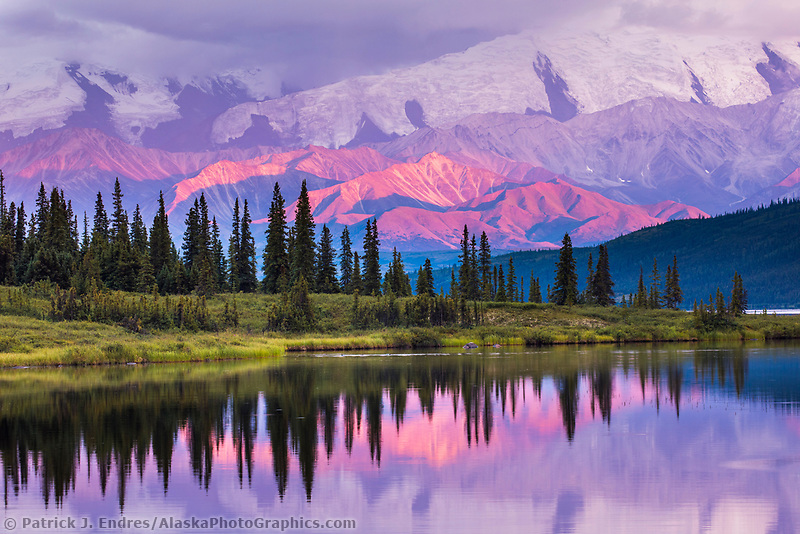 Dramatic pink light on the Alaska Range mountains reflecting in Wonder Lake, Denali National Park, Alaska.