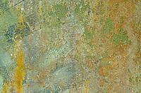 Wall Abstract