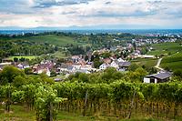 Germany, Baden-Wurttemberg, Offenburg - district Rammersweier: wine village at Ortenau district | Deutschland, Baden-Wuerttemberg, Offenburg - Stadtteil Rammersweier: Weinort im Ortenaukreis