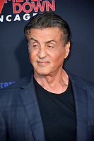 """LOS ANGELES, USA. August 14, 2019: Sylvester Stallone at the premiere of """"47 Meters Down: Uncaged"""" at the Regency Village Theatre.<br /> Picture: Paul Smith/Featureflash"""
