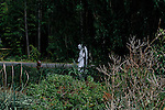 A statue sits nesled in the bushes along a county road in Louisa, Va.