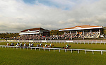 Offaly, riden by Paul Carberry leadds the field on the first circuit in the Paddy Power Cork National at Cork Racescourse on Sunday. The horses are running past the new  Pavilion Stand which was officially opened  by Batt O'Keeffe, Minister for Education..Picture by Don MacMonagle
