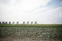 peloton at work, Zdenek Stybar (CZE/OmegaPharma-Quickstep) leading<br /> <br /> stage 3<br /> Euro Metropole Tour 2014 (former Franco-Belge)