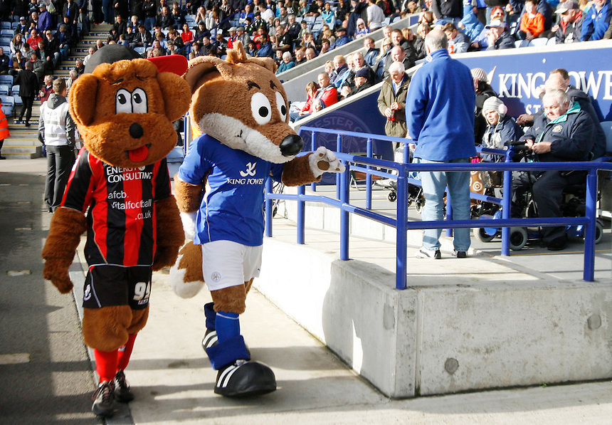 General view of Leicester City mascot Filbert Fox and Bournemouth mascot Cherry Bear (L) before the match<br /> <br /> Photo by Jack Phillips/CameraSport<br /> <br /> Football - The Football League Sky Bet Championship - Leicester City v Bournemouth - Saturday 26th October 2013 - King Power Stadium - Leicester<br /> <br /> &copy; CameraSport - 43 Linden Ave. Countesthorpe. Leicester. England. LE8 5PG - Tel: +44 (0) 116 277 4147 - admin@camerasport.com - www.camerasport.com