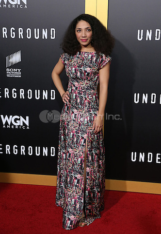 "WESTWOOD, CA - February 28: Jasika Nicole, At Premiere Of WGN America's ""Underground"" Season 2, At The Regency Village Theatre In California on February 28, 2017. Credit: Faye Sadou/MediaPunch"