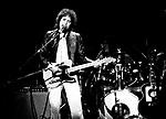 Bob Dylan .© Chris Walter.