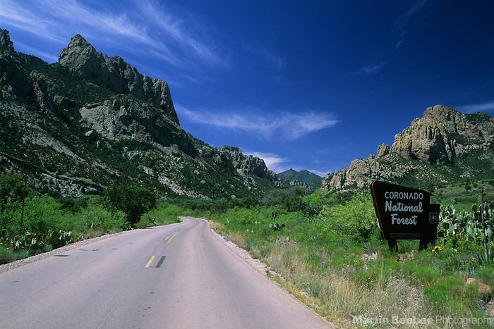 Road leading into Cave Creek Canyon, Coronado National Forest, Arizona