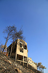 Israel, Mount Carmel, Kibbutz Beit Oren after the big fire