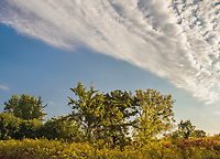 Clouds form overhead as a frint passes through over Poverty Prairie at Waterfall Glen Forest Preserve in DuPage County, Illinois