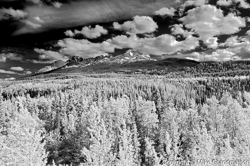 CLouds and Forest. Stewart Cassiar Highway. , Good Hope, British Columbia, Canada