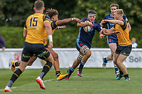 Match action from the Greene King IPA Championship match between London Scottish Football Club and Ealing Trailfinders at Richmond Athletic Ground, Richmond, United Kingdom on 8 September 2018. Photo by David Horn.