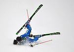 23/02/2018 - Womens ski cross - Phoenix snow park - Pyeongchamg2018 - Korea