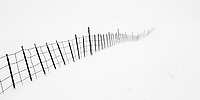 Fence line in a blizzard. Summit County, Utah