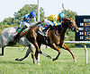 Starry winning at Delaware Park on 9/13/12