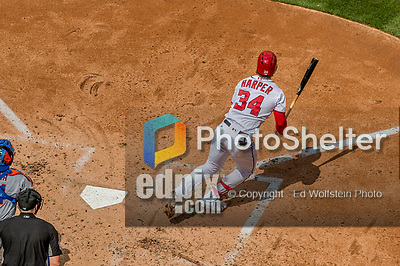 30 April 2017: Washington Nationals outfielder Bryce Harper in action against the New York Mets at Nationals Park in Washington, DC. The Nationals defeated the Mets 23-5, with the Nationals setting several individual and team records, in the third game of their weekend series. Mandatory Credit: Ed Wolfstein Photo *** RAW (NEF) Image File Available ***