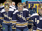Feb. 17, 2013; Hockey vs Miami of Ohio at Soldier Field in Chicago...Photo by Matt Cashore/University of Notre Dame