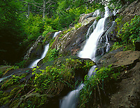 Shenandoah National Park, VA<br /> Dark Hollows Falls a 70 foot series of cascades flows over greenstone located near Big Meadows