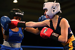 Cal boxer Michaela Landgraf and Air Force boxer Sharina Stayton compete in the National Collegiate Boxing Association action in Reno, Nev. on Friday, Jan. 31, 2020. Stayton won the bout. <br /> Photo by Cathleen Allison