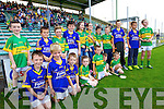 Young Lixnaw fans at the County Senior Final at Austin Stack Park Tralee on Sunday.
