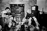 Puppy Farming Wales 1989. RSPCA inspector Peter Anderson visits a West wales farm, where the owners breed Pomeranians and Chihuahuas.