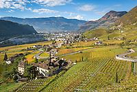 Italy, Alto Adige-Trentino (South Tyrol), Bolzano: vineyards at Valle di Isarco, at background provincial capital Bolzano   Italien, Suedtirol (Alto Adige-Trentino), Bozen: Weinberge im Eisacktal, im Hintergrund die Landeshauptstadt Bozen