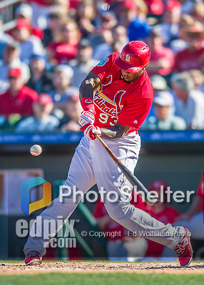 6 March 2016: St. Louis Cardinals outfielder David Washington in action during a Spring Training pre-season game against the Washington Nationals at Roger Dean Stadium in Jupiter, Florida. The Nationals defeated the Cardinals 5-2 in Grapefruit League play. Mandatory Credit: Ed Wolfstein Photo *** RAW (NEF) Image File Available ***