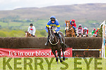 At  the The North Kerry Harriers Point to Point in Ballybeggan Racecourse on Saturday