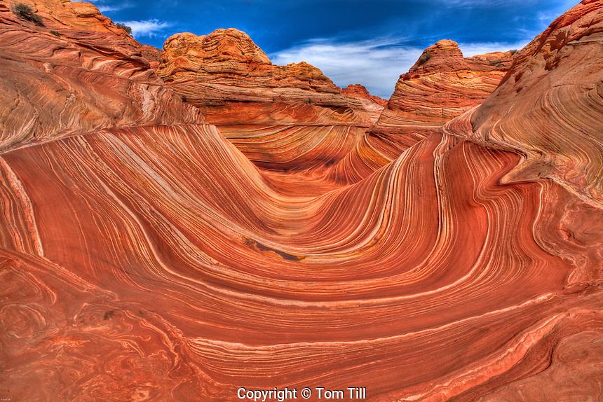 The Wave, Paria/Vermillion Cliffs Wilderness, Arizona  Vermillion Cliffs National Monument