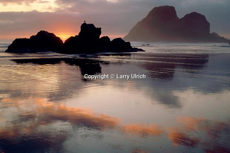Camel Rocks<br />   from Houda Point Beach<br /> Trinidad<br /> Humboldt County,  California