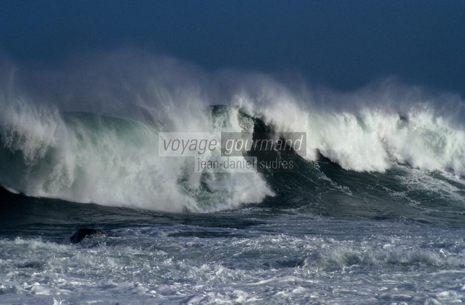 Europe/France/Bretagne/22/Côtes d'Armor/Circuit de la Côte des Ajoncs/Plougrescant: L'océan à la pointe du chateau aux environs du gouffre de Castel-Meur