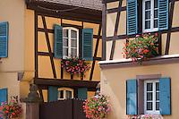 Europe/France/Alsace/67/Bas-Rhin/ Marlenheim: Maison de vignerons du village