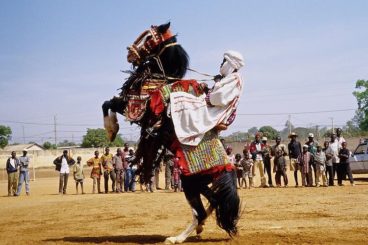 Enthronement of the king of Bariba. The traditional Gaani festival. The horse is making a courbette while dancing.<br />  <br /> Intronisation du roi des Bariba. La f&ecirc;te traditionnelle de la Gaani. Le cheval fait une courbette en dansant d'un pied sur l'autre.